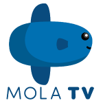 Mola TV (Beta) Android APK Download 1