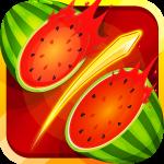 Slash Fruit Master 6